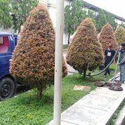 Sedot Wc Sumedang Murah (30555466) di Kab. Sumedang