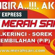 Segera..!, Bus Tujuan Pekanbaru Tembilahan , Lintasan Merah Sari (30594968) di Kab. Rokan Hilir