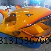 Sepeda Air Bebek Atau Sepeda Air Ikan Paus (30623162) di Kab. Pidie Jaya