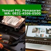Rekomendasi Pkl Jurusan Bisnis Pemasaran (30775011) di Kab. Bantul