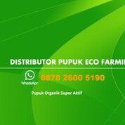 WA 0878 2600 5190 Pupuk Eco Farming Di Bengkalis (30833478) di Kab. Bengkalis