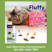 PALING AMPUH!! WA 0851-5669-1884, Supplier Obat Kutu Kucing Alami Di Jakarta (30866389) di Kota Depok
