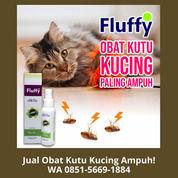 PROMO!! WA 0851-5669-1884, Distributor Obat Kutu Kucing Spray Di Jakarta (30866396) di Kota Depok