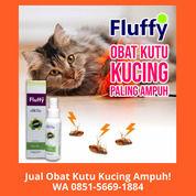 GRATIS ONGKIR!! WA 0851-5669-1884, Pusat Obat Kutu Kucing Ampuh Di Jakarta (30866405) di Kota Depok