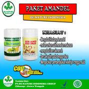Obat Alami Amandel Mambesar (30903230) di Kab. Minahasa Selatan