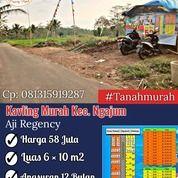 Tanah Murah Pinggir Jalan Desa Palaan - Kec. Ngajum (30916518) di Kab. Malang