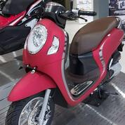 Honda Scoopy 110 Cc [ Promo Credit. ] (30957972) di Kota Jakarta Selatan