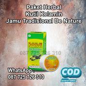 Obat Herbal Kutil Kelamin, Perontok Dan Pembasmi Kutil DE NATURE Bisa COD SEKARANG (30963685) di Kab. Halmahera Tengah