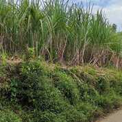 Tanah View Kota Malang (30983067) di Kab. Malang