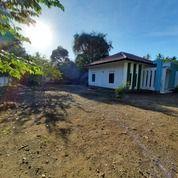 Tanah Dan Rumah Di Sire KLU Dekat Pantai Cocok Untuk Villa (31024520) di Kab. Lombok Utara