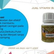 BERKUALITAS, CALL WA 0812-8277-2305, Vitamin Burung Dara Kolongan (31028407) di Kab. Brebes