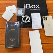 Iphone 12 Pro Max IBox 256gb (31031320) di Kota Jakarta Selatan