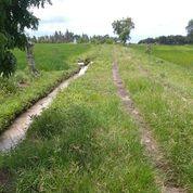 Tanah 8,45 Are, Pantai Klencung Tegalmengkeb Selemadeg Timur Tabanan (31044943) di Kab. Tabanan