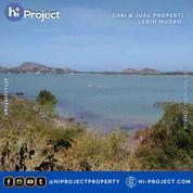 Tanah Bukit Lombok Tengah Di Kuta 67,000 M2 T579 (31098078) di Kab. Lombok Tengah