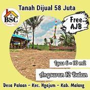 Kaving Murah Dekat Wisata Kampung Nanas (31122792) di Kab. Malang