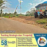 Kavling Dekat Kampus Unira Kepanjen Malang (31122892) di Kab. Malang