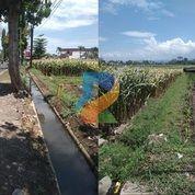 DREAMPROPERTI   Tanah Murah Poros Sumber Pucung Malang (31166413) di Kab. Malang