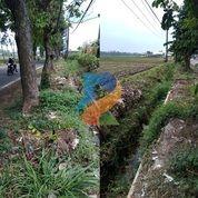 DREAMPROPERTI   Tanah Prospektif Jalan Raya Slorok Malang (31166425) di Kab. Malang