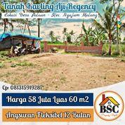 Kavling Murah Pinggir Jalan Desa Palaan - Kec.Ngajum Malang (31186904) di Kab. Malang