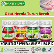 Berikut Ini Nama Dan Jenis Obat Hernia Tanpa Operasi Di Jawa Tengah (31205560) di Kab. Brebes
