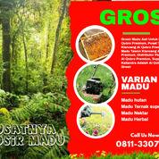 SUPPLIER !! Madu Hutan Liar Alqubrodi Surabaya (31216449) di Kab. Brebes