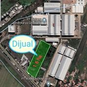 Tanah Daerah Industri Di Jalan Utama Brebes (31248560) di Kab. Brebes