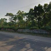 Tanah Strategis Pinggir Jalan Utama Kemang Parung Bogor (3453465) di Kota Bogor