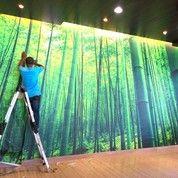 Pemasangan Wallpaper Dinding (3527133) di Kota Jakarta Utara