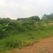 Tanah Murah Strategis di Sasak Panjang Tajur Halang Bogor (3552149) di Kab. Bogor