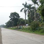 Tanah Strategis Pinggir Jalan Utama Gunung Sindur Bogor (3583757) di Kab. Bogor