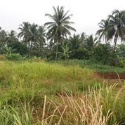Tanah Strategis Pinggir Jalan Utama Parung Bogor (3645993) di Kab. Bogor