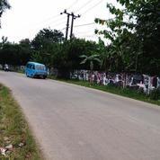Tanah Strategis Pinggir Jalan Raya Ciseeng Parung Bogor (4149187) di Kab. Bogor