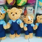 Boneka Beruang Teddy Bear garin brother & sister boy&girl 1set 2uk SNI
