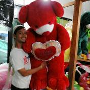 Teddy Bear Love Merah Besar High Quality