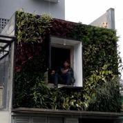 vertical garden menggunakan konstruksi box dan pockets (5299389) di Kota Jakarta Pusat