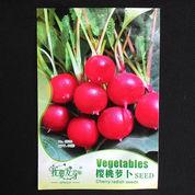Cherry radish (Lobak Cherry) (6570225) di Kota Tangerang
