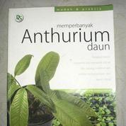 Memperbanyak Anthurium Daun (7280351) di Kota Yogyakarta