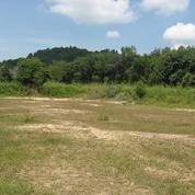 Disewahkan Tanah COMMERSIAL, Sangat STRATEGIS/KAFLING (7999467) di Kota Surabaya