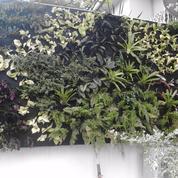 tukang taman vertical garden bintaro dan sekitarnya (8144725) di Kota Tangerang Selatan