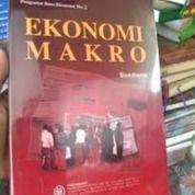ekonomi makro, boediono