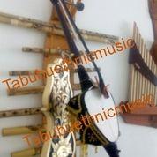 Rebab Jawa Profesional (8773015) di Kab. Bantul