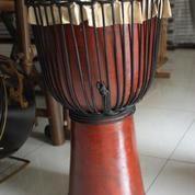 Jimbe Pro T : 60 cm (8962121) di Kota Yogyakarta