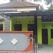 Rumah Murah di Kota Tabanan (8984639) di Kab. Tabanan