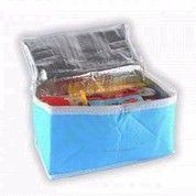 Cooler Bag Tas Penyimpan Hawa Dingin Unik ASI Panas (9129817) di Kota Surabaya