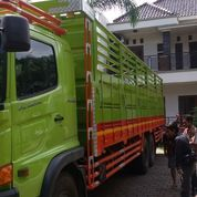 Hino Bak Dropside Surabaya Fl 235 Jw