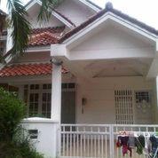 Rumah Siap Huni Strategis Di CENDANA Golf JL.Kamboja TURUN Harga Lippo Karawaci (9666973) di Kota Tangerang