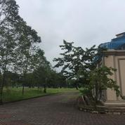 Investasi tanah lokasi di jl palem pinang raya (9993921) di Kota Tangerang