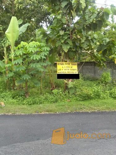 Tanah Di Jogja Barat, Tanah Murah Dekat Jalan Wates Sedayu Bantul (10271595) di Kab. Bantul