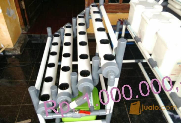 Hidroponik g4 dt hobi 10504173