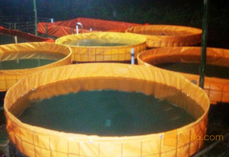 Terpal Kolam Ikan Terpaulin ORCHID - Bulat (10914195) di Kab. Sleman